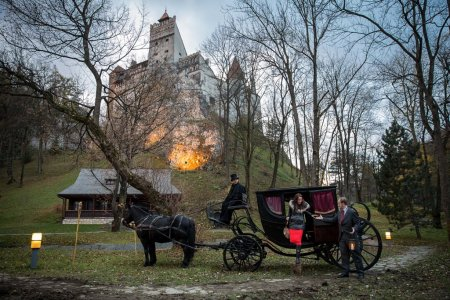Pair spend a night at Dracula's castle